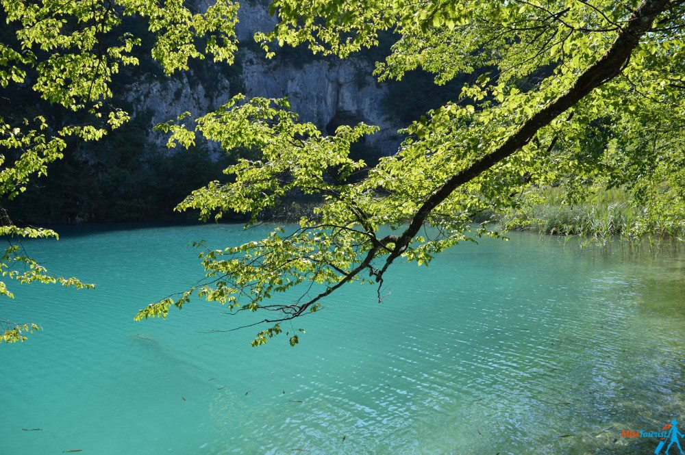 Plitvice lakes from Split tour